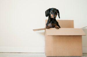 Comment bien organiser son déménagement